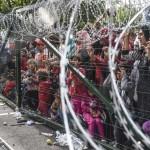 Sığınmacılar Macaristan-Sırbistan sınırında dikenli teller arkasında bekliyor. Fotoğrafçı: ARMEND NIMANI Yer: Macaristan Tarih: 16 Eylül 2015