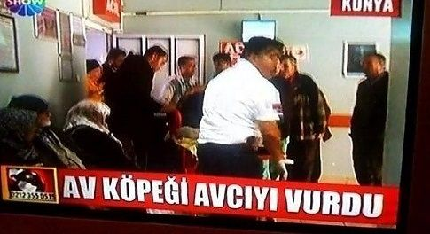 Türkiye'den ilginç fotoğraflar