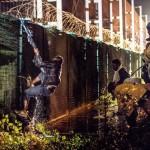 Bir sığınmacı Eurotunnel terminalinin dikenli tellerle kaplı çitlerini aşmaya çalışıyor. Fotoğrafçı: PHILIPPE HUGUEN Yer: Fransa Tarih: 30 Temmuz 2015