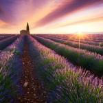 3 yıldır dünyayı gezen Fransız fotoğrafçı ilginç bir projeye imza attı.  (Provence, Fransa)