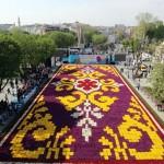 """11. Lale Festivali kapsamında, Sultanahmet Meydanı'na 563 bin canlı laleden """"lale halısı"""" oluşturuldu."""
