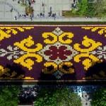 Dünyanın en büyük canlı lale halısı3