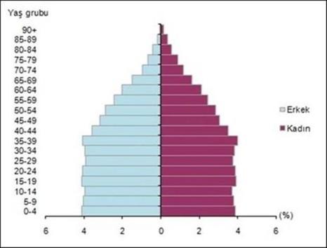 Nüfus piramidi, 2017 (TÜİK)